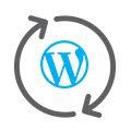 feature icon 07 2 - Respaldo de Sitios Codeguard